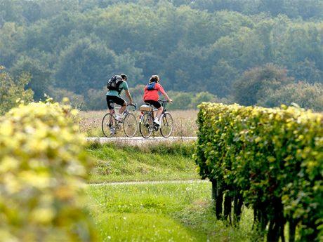 cyclotourisme gironde Roquefort