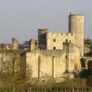 Le Château de Rauzan, contemporain de la maison forte de Roquefort, édifié au XIIIe siècle à la demande de Jean Sans Terre, Roi d'Angleterre.